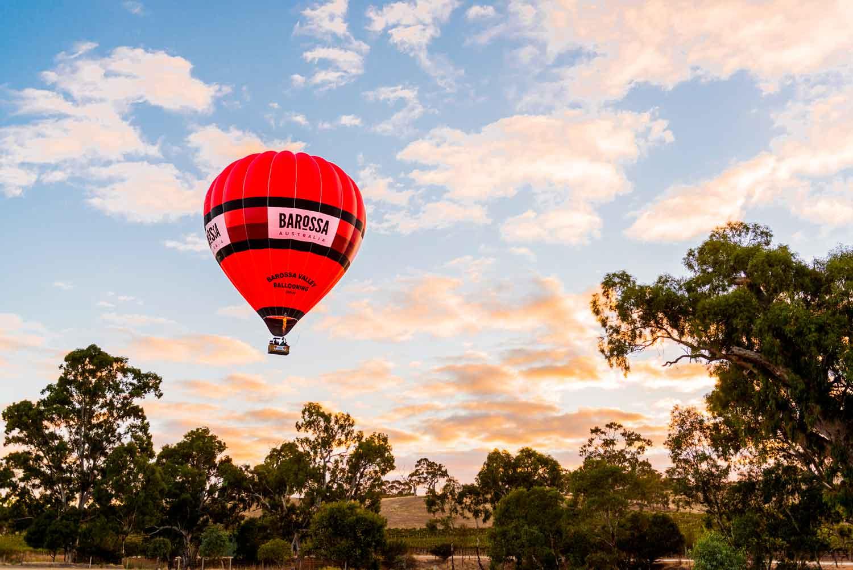 南オーストラリア州ワイングランドテイスティング&バロッサワインスクールローンチ2021